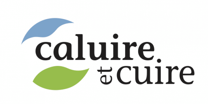 Fibre optique Caluire et Cuire offres internet fibre entreprise et pro